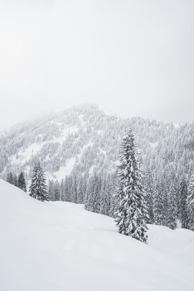 Verschneite Berglandschaft - Chris Gollhofer Landschaftsfotografiefotografie